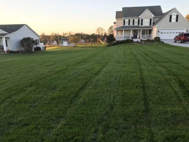 Tips For Landscaping Your Yard
